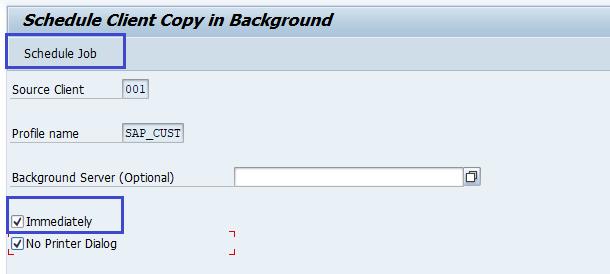 SAP BASIS Copy Client