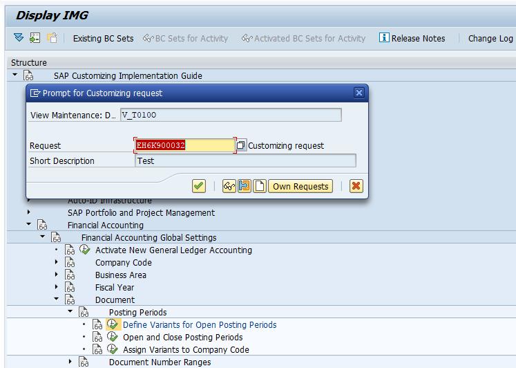 SAP FI Posting Period Variant